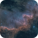 The great wall in NGC 7000,                                  Christoph Lichtblau