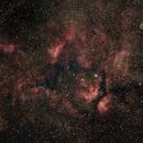 IC 1311 and the Star Sadr (γCyg),                                  Ruben Barbosa