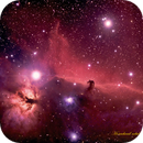Horsehead Nebula,                                Finn