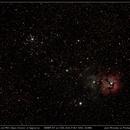M20 - Trifid Nebula and M21 - Open Cluster in Sagitarius,                                José Miranda