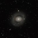 M94, Croc's Eye,                                Dcox17