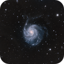 M101,                                Doug MacDonald