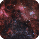 NGC 2032 and abundant companions in the Large Magellanic Cloud,                                Alex Woronow