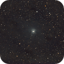 NGC 7023 - The Iris Nebula Wide Field,                                Timothy Martin & Nic Patridge