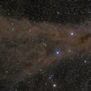 Corona Australis Dust Cloud,                                Wei-Hao Wang
