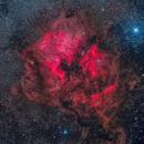 North American Nebula,                                Alex Woronow