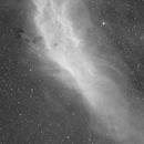 NGC1499,                                Copernicus