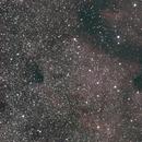 NGC 6997 North America Nebula,                                Tony Kriz