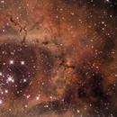 NGC- 2237,                                Carles Zerbst