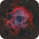 Rosette Nebula HaLRGB,                                Paul Schuberth