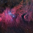 NGC2264 HaRGB,                                Mark Holbrook