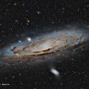 M31 - Galaxia de Andrómeda,                                José Fco. del Aguila (daguila)