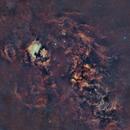 Cygnus Loop Mosaic,                                Tarun Kottary
