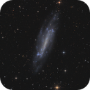 NGC4236,                                tommy_nawratil
