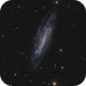 NGC4236,                                tommy_nawratil