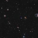 NGC1365 & Co,                                Tony Kim