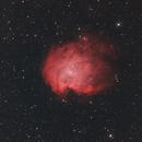 The Monkey Head Nebula (NGC 2174),                                Joseph Buchanan