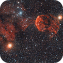 IC 444 et IC 443,                                Greg Rodriguez