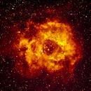 Nébuleuse de la Rosette ; NGC 2244,                                Mariusz