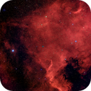 NGC 7000 Nordamerikanebel,                                Frank Rauschenbach