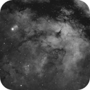 Gamma Cygni Nebula,                                Wes Chilton