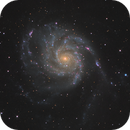 M101: a night with a lot of cirrus and moonlight,                                Albert van Duin
