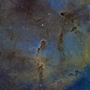 Elephant Trunk Nebula,                                Brian Sweeney