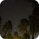 Orion Stars,                                Vital