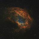 SH2-261 Lower's Nebula,                                dheilman