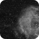 Rosette Nebula in Ha,                                Chris Massa