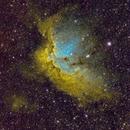 The Wizard Nebula - Narrowband,                                Eddie_R
