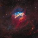 Sh2-174 (LBN 598) - Valentine Rose Nebula,                                Yannick Akar