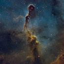 IC1396A - Elephant's Trunk (SHO),                                Willem Jan Drijfhout