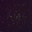 M44 Beehive Cluster,                                NeilBuc