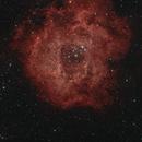 NGC2238 RASA8 ASI294MC-Pro,                                Clemley
