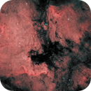 Bi Color NGC 7000,                                Dan Wilson
