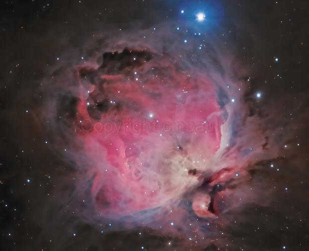 Orion Nebula,                                Paul May