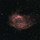 Lower's Nebula (Sh2-261),                                John Stiner