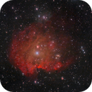 SH2-252/NGC 2175 in LRG,                                Torben van Hees