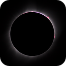 2017-08-21 Total Solar Eclipse, Prominences,                                mlewis