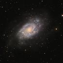 NGC 2403 (Caldwell 7),                                Doc_HighCo