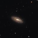 NGC5005,                                Frédéric Tapissier