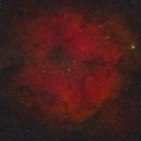 IC 1396 - RedCat 51,                                Andrew Burwell