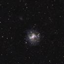 NGC 4214  Dwarf galaxy in  CVn,                                GJL