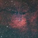 NGC 6823,                                Cédric Champeau