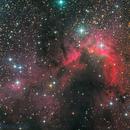 Cave Nebula (Sh2-155),                                Miles Zhou