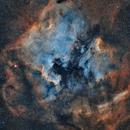 NGC 7000 - North America Nebula (SHO),                                Frank Breslawski