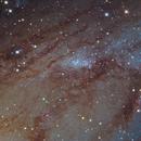 NGC206 Open cluster in Andromeda,                                Giovanni Paglioli