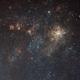 The Tarantula Nebula and Surroundings,                                CarlosAraya