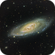 M106,                                Rex Groves